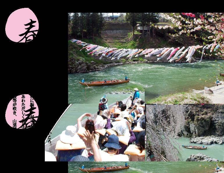 春|水がぬるみ、芽ぶきが待ちどおしいころ、イワマツツジが咲き揃う。桜も開き、峡谷に賑わいがでる。周辺の山々もあわただしく春を迎え、カタクリ、山桜等が咲き、山菜採りのシーズンとなる。